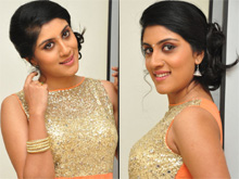 Dhanya Balakrishna At Bhale Manchi Roju Audio Launch Photos (PHOTOS)
