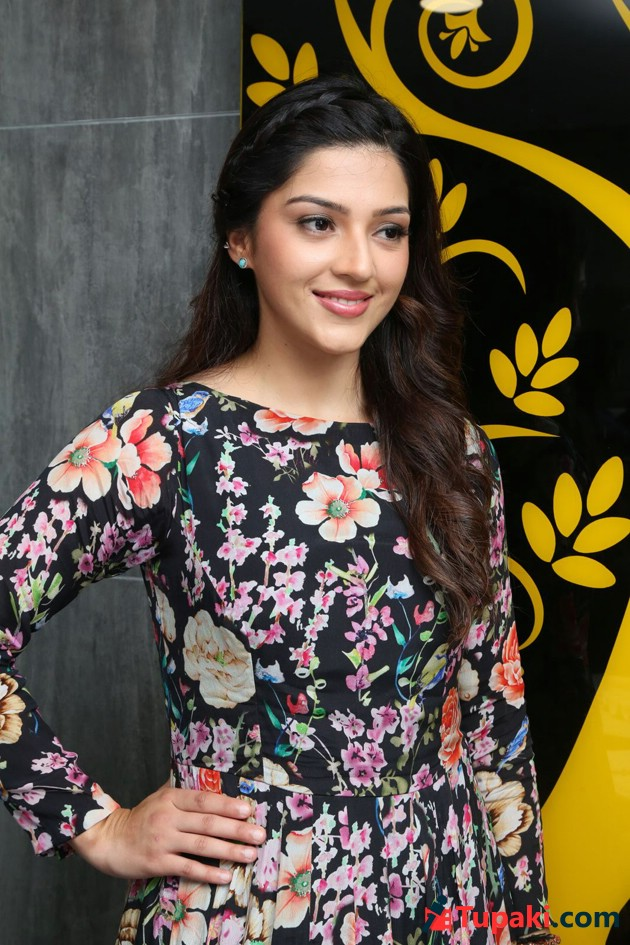 Mehreen Pirzada Launches Naturals Beauty Salon Photos