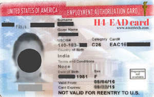 Donald Trump Administration plans to end work permit to H1B visa spouses