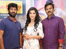 Nela Ticket Movie Press Meet Photos