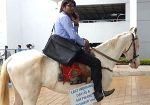 Techie rides a horse to office on last day of work