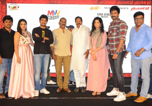 Neevevaro Movie Audio Launch Photos