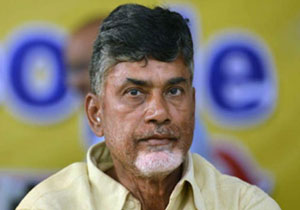 In front there is Crocodile Festival for Chandrababu Naidu