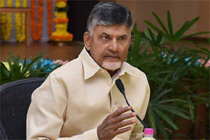 Chandrababu Looking For President Government In AP