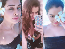 Payal Rajput Photo shoot