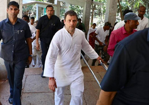 Rahul Gandhi Climbs Tirumala Hills By Foot