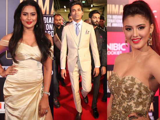 SIIMA Awards 2019 Day 2 Photos-4