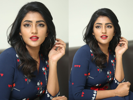 Eesha rebha interview Pics