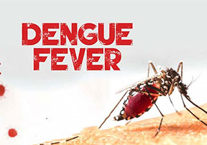 Be careful With Dengue Fever on Pandemic Time