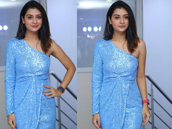 Payal Rajput posed for photos at the Event