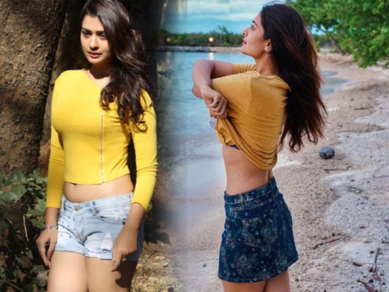 Payal Rajput Beautiful Photo collection