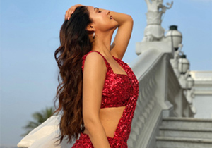 sonal chauhan Role In F3 Movie