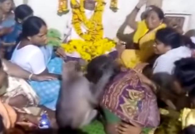Monkey Consoles Woman At Karnataka Funeral