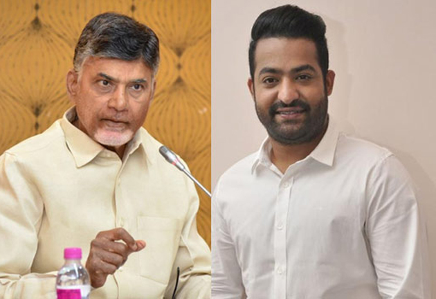 Chandrababu Naidu On About Jr NTR Enter in TDP
