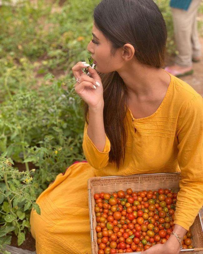 Ravishing Beauty Mouni Roy Plucking Fresh Red Tomatoes ...