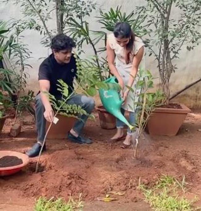 Nagarjuna Samantha planted plants ...!