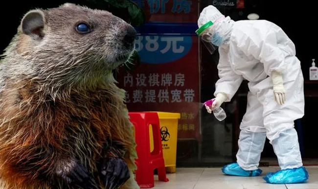 China Seals Off Villages After Bubonic Plague Deaths