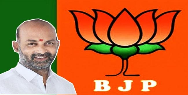 BJP loses in Sagar