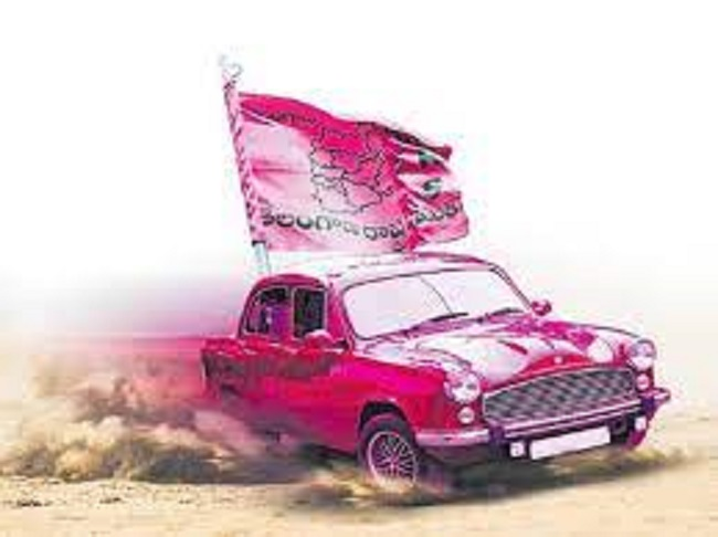 In Municipalities TRS Clean Sweep?