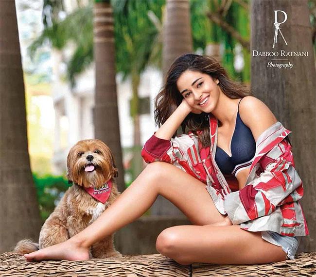 Ananya Pandey Latest Stunning Pose