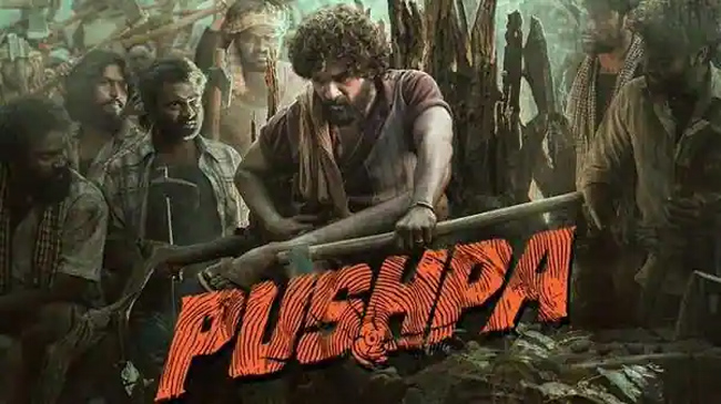 KGF .. Comments made by the uppena director comparing pushpa are viral?