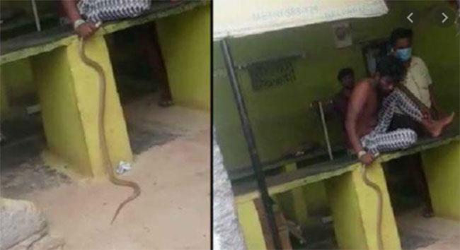 Shocking And Funny Incident In Karnataka