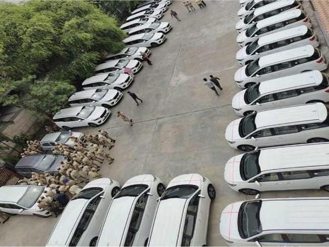 noise of kia cars in Pragati Bhavan