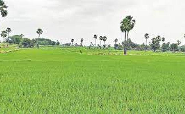Amendment of land values in Telangana