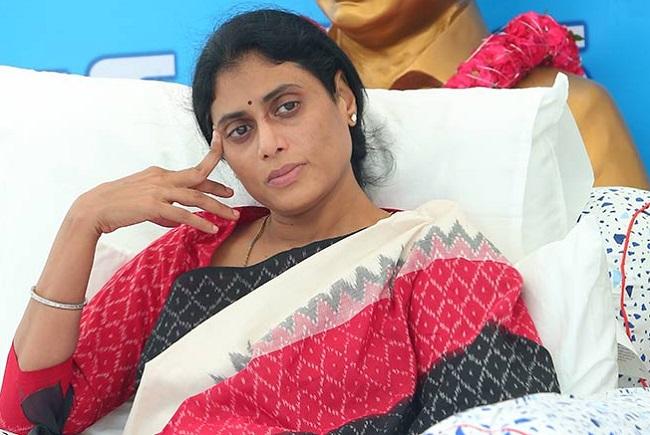 Tupaki Survey Will YS Sharmila win as MLA