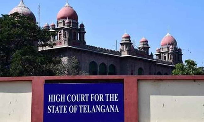 Telangana High Court Comments